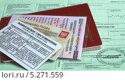 Купить «Документы для поездки в Польшу на автомобиле», эксклюзивное фото № 5271559, снято 4 июля 2020 г. (c) Михаил Рудницкий / Фотобанк Лори
