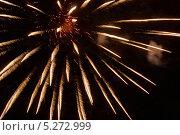 Купить «Золотые лепестки фейерверка на темном небе», фото № 5272999, снято 13 октября 2012 г. (c) Иван Бондаренко / Фотобанк Лори