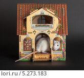 Купить «Крыса в кукольном домике», фото № 5273183, снято 25 ноября 2012 г. (c) Argument / Фотобанк Лори
