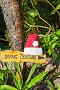 Указатель с надписью diving center и шапка Санта Клауса, фото № 5277975, снято 9 декабря 2016 г. (c) Михаил / Фотобанк Лори