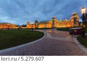 Большой Царицынский дворец (2013 год). Редакционное фото, фотограф Тимур Уразов / Фотобанк Лори