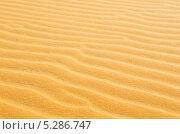 Купить «Пустыня», фото № 5286747, снято 26 февраля 2013 г. (c) Александр Подшивалов / Фотобанк Лори
