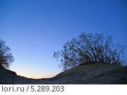 Купить «Рассвет на Куршской косе», эксклюзивное фото № 5289203, снято 29 сентября 2013 г. (c) Ирина Борсученко / Фотобанк Лори
