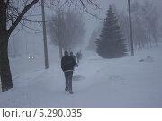Люди идущие по улице в метель. Стоковое фото, фотограф Галина Нагаева / Фотобанк Лори