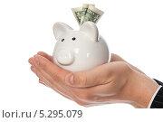 Купить «Свинья-копилка в руках», фото № 5295079, снято 10 декабря 2011 г. (c) Збродько Татьяна / Фотобанк Лори