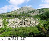 Высокогорные луга Баргузинского хребта озера Байкал (2013 год). Стоковое фото, фотограф Пыткина Альбина / Фотобанк Лори