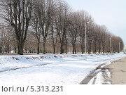 Купить «Весна на острове Канта (Кнайпхоф), Калининград», эксклюзивное фото № 5313231, снято 7 апреля 2013 г. (c) Михаил Рудницкий / Фотобанк Лори
