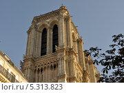 Купить «Северная башня Собора Парижской Богоматери (Нотр-Дам-де-Пари), Париж, Франция», фото № 5313823, снято 20 августа 2013 г. (c) Дарья Кравченко / Фотобанк Лори