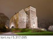 Купить «Ночной вид на Замок Турку, Финляндия», эксклюзивное фото № 5317095, снято 22 ноября 2013 г. (c) Литвяк Игорь / Фотобанк Лори