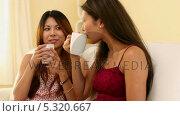 Купить «Pretty sisters sitting on couch holding cups», видеоролик № 5320667, снято 16 февраля 2019 г. (c) Wavebreak Media / Фотобанк Лори
