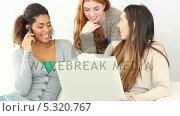Купить «Lovely friends using notebook while sitting on couch », видеоролик № 5320767, снято 16 февраля 2019 г. (c) Wavebreak Media / Фотобанк Лори
