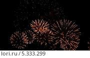 Купить «Праздничный фейерверк», видеоролик № 5333299, снято 3 октября 2013 г. (c) Игорь Жоров / Фотобанк Лори