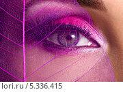 Купить «Накрашенный глаз с розовыми тенями и прозрачный лист», фото № 5336415, снято 11 ноября 2013 г. (c) Валуа Виталий / Фотобанк Лори