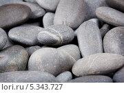 Морская галька, фон. Стоковое фото, фотограф Алексей Лукин / Фотобанк Лори
