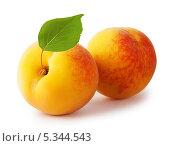 Два спелых желтых абрикоса с листиком. Стоковое фото, фотограф Алексей Лукин / Фотобанк Лори