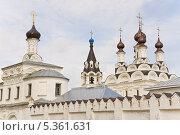 Купить «Купола Свято Благовещенского мужского монастыря (Муром)», эксклюзивное фото № 5361631, снято 26 мая 2013 г. (c) Алёшина Оксана / Фотобанк Лори
