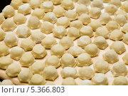 Купить «Русские пельмени», фото № 5366803, снято 28 октября 2013 г. (c) Morgenstjerne / Фотобанк Лори