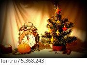 Новогодняя елочка (2012 год). Редакционное фото, фотограф Наталья Аракчеева / Фотобанк Лори