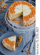 Купить «Сладкий торт с ягодами облепихи», фото № 5370367, снято 29 октября 2013 г. (c) Ульяна Хорунжа / Фотобанк Лори