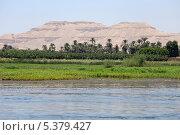 Купить «Берег реки Нил, Египет, г. Луксор», эксклюзивное фото № 5379427, снято 29 июля 2013 г. (c) Алексей Гусев / Фотобанк Лори