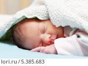 Купить «Новорожденный ребенок спит под одеялом», фото № 5385683, снято 4 октября 2012 г. (c) Яков Филимонов / Фотобанк Лори