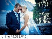 Купить «Портрет жениха и невесты в летнем парке», фото № 5388015, снято 11 августа 2013 г. (c) Raev Denis / Фотобанк Лори