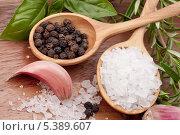 Свежая зелень, чеснок, перец горошком и ложка соли. Стоковое фото, фотограф Natalja Stotika / Фотобанк Лори