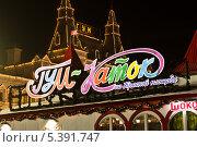 Купить «Каток на Красной площади», фото № 5391747, снято 15 декабря 2013 г. (c) Sashenkov89 / Фотобанк Лори