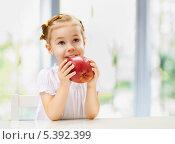 Купить «Маленькая девочка ест большое красное яблоко», фото № 5392399, снято 25 ноября 2013 г. (c) Константин Юганов / Фотобанк Лори