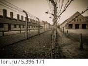 Купить «Электрический забор в бывшем нацистском концентрационном лагере Аушвиц I, Польша», фото № 5396171, снято 2 мая 2013 г. (c) Andrejs Pidjass / Фотобанк Лори