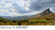 Купить «Вид на гору и виноградники», фото № 5399887, снято 18 сентября 2013 г. (c) Паровышник Наталья / Фотобанк Лори