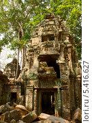 Камбоджа, храм Та Пром (2013 год). Стоковое фото, фотограф Юлия Бабкина / Фотобанк Лори