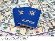 Два украинских загранпаспорта на фоне банкнот. Стоковое фото, фотограф Артур Буйбаров / Фотобанк Лори