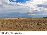 Купить «Пустынный песочный пляж Адриатического моря», фото № 5420891, снято 3 ноября 2013 г. (c) Евгений Ткачёв / Фотобанк Лори