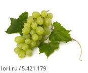 Купить «Гроздья винограда с листьями на белом фоне», фото № 5421179, снято 11 июля 2011 г. (c) Natalja Stotika / Фотобанк Лори