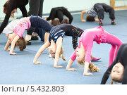 """Купить «Девочки делают """"мостик"""" на оздоровительных занятиях по акробатике», фото № 5432803, снято 21 декабря 2013 г. (c) Кекяляйнен Андрей / Фотобанк Лори"""