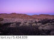 Пояс Венеры на восходе солнца в пустыне (2013 год). Стоковое фото, фотограф Aleksandr Stzhalkovski / Фотобанк Лори