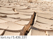Сухая почва в Долине Смерти (2013 год). Стоковое фото, фотограф Aleksandr Stzhalkovski / Фотобанк Лори