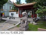 Купить «Лев  Китайского сада дружбы», фото № 5438243, снято 22 марта 2009 г. (c) Корчагина Полина / Фотобанк Лори
