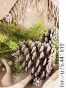 Купить «Новогодняя композиция со снежинками», фото № 5441619, снято 29 декабря 2013 г. (c) Наталья Осипова / Фотобанк Лори