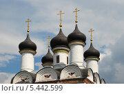 Купить «Купола церкви Покрова Пресвятой Богородицы в Братцево, Москва», эксклюзивное фото № 5442599, снято 23 мая 2010 г. (c) lana1501 / Фотобанк Лори