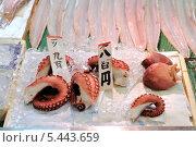 Свежий разделанный осьминог на льду на прилавке рынка Нисики, Киото (2010 год). Редакционное фото, фотограф Александра Прохорова / Фотобанк Лори
