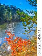 Купить «Молодое деревце осины с красными листьями на фоне реки. Река Раздельная, Новосибирская область», эксклюзивное фото № 5456115, снято 22 сентября 2012 г. (c) Евгений Мухортов / Фотобанк Лори