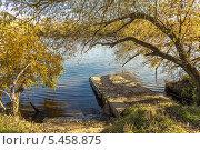 Москва-река в Подмосковье. Осень (2013 год). Стоковое фото, фотограф Владимир Сергеев / Фотобанк Лори