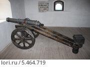 Пушка в замке Любарта (2013 год). Редакционное фото, фотограф Владимир Одегов / Фотобанк Лори