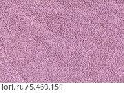 Купить «Образец текстуры куска цветной кожи», фото № 5469151, снято 7 июля 2012 г. (c) Михаил Иванов / Фотобанк Лори