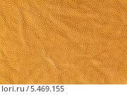 Купить «Образец текстуры куска цветной кожи», фото № 5469155, снято 7 июля 2012 г. (c) Михаил Иванов / Фотобанк Лори