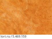 Купить «Образец текстуры куска цветной кожи», фото № 5469159, снято 7 июля 2012 г. (c) Михаил Иванов / Фотобанк Лори