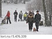 Купить «Люди гуляют в лесу в сильный снегопад», эксклюзивное фото № 5476339, снято 12 января 2014 г. (c) lana1501 / Фотобанк Лори