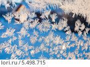 Купить «Фон, морозные узоры на окне», фото № 5498715, снято 18 января 2019 г. (c) Tamara Sushko / Фотобанк Лори